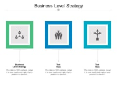 Business Level Strategy Ppt PowerPoint Presentation Slides Graphics Cpb