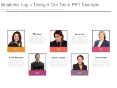 Business Logic Triangle Our Team Ppt Example
