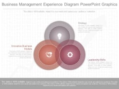 Business Management Experience Diagram Powerpoint Graphics