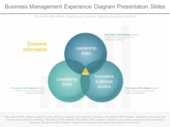 Business Management Experience Diagram Presentation Slides