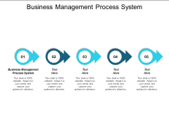 Business Management Process System Ppt PowerPoint Presentation Portfolio Outfit Cpb