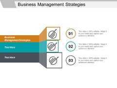 Business Management Strategies Ppt PowerPoint Presentation File Background Cpb