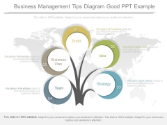 Business Management Tips Diagram Good Ppt Example