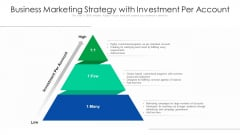 Business Marketing Strategy With Investment Per Account Ppt Model Objects PDF