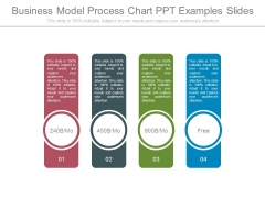 Business Model Process Chart Ppt Examples Slides