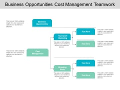 Business Opportunities Cost Management Teamwork Marketing Branding Goals Ppt PowerPoint Presentation Inspiration Graphics
