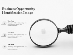 Business Opportunity Identification Image Ppt PowerPoint Presentation Outline Sample PDF