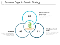 Business Organic Growth Strategy Ppt Powerpoint Presentation Portfolio Gallery