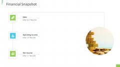 Business Overview PPT Slides Financial Snapshot Ppt Background PDF