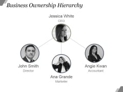 Business Ownership Hierarchy Ppt PowerPoint Presentation Example File