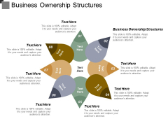 Business Ownership Structures Ppt PowerPoint Presentation Layouts Graphics Design Cpb