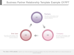 Business Partner Relationship Template Example Of Ppt