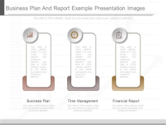 Business Plan And Report Example Presentation Images