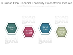 Business Plan Financial Feasibility Presentation Pictures