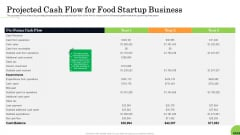 Business Plan For Fast Food Restaurant Projected Cash Flow For Food Startup Business Summary PDF