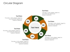 Business Planning And Strategy Playbook Circular Diagram Ideas PDF