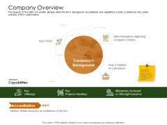 Business Planning And Strategy Playbook Company Overview Icons PDF