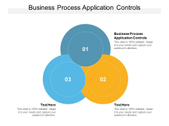 Business Process Application Controls Ppt PowerPoint Presentation File Guidelines Cpb