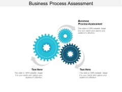 Business Process Assessment Ppt PowerPoint Presentation Styles Portrait Cpb