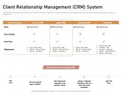 Business Process Automation Client Relationship Management CRM System Summary PDF
