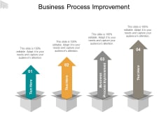 Business Process Improvement Ppt PowerPoint Presentation Show Deck Cpb