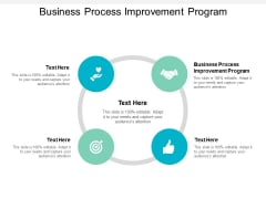 Business Process Improvement Program Ppt PowerPoint Presentation Pictures Layout Ideas Cpb