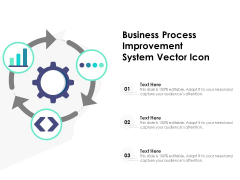 Business Process Improvement System Vector Icon Ppt PowerPoint Presentation Gallery Display PDF