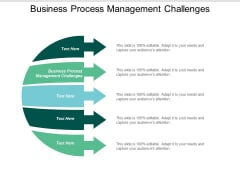 Business Process Management Challenges Ppt Powerpoint Presentation Gallery Pictures Cpb