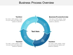 Business Process Overview Ppt PowerPoint Presentation Gallery Icons Cpb