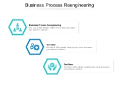 Business Process Reengineering Ppt PowerPoint Presentation Professional Picture Cpb