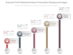 Business Profit Statistical Analysis Presentation Background Images