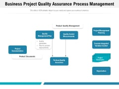 Business Project Quality Assurance Process Management Ppt PowerPoint Presentation Infographics Skills PDF