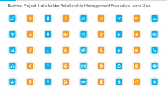 Business Project Stakeholder Relationship Management Procedure Icons Slide Ppt Summary Inspiration PDF