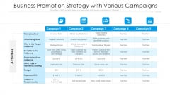 Business Promotion Strategy With Various Campaigns Ppt Show Picture PDF