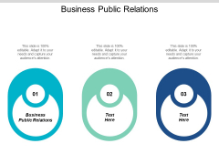 Business Public Relations Ppt PowerPoint Presentation Icon Designs Download Cpb