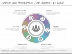 Business Risk Management Cycle Diagram Ppt Slides