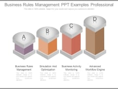 Business Rules Management Ppt Examples Professional