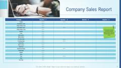 Business Strategy Development Process Company Sales Report Microsoft PDF