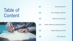 Business Strategy Development Process Table Of Content Demonstration PDF