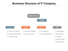 Business Structure Of It Company Ppt PowerPoint Presentation Gallery Graphics Template