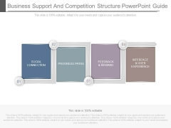 Business Support And Competition Structure Powerpoint Guide