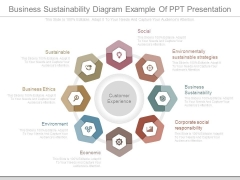 Business Sustainability Diagram Example Of Ppt Presentation