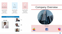 Business Synergies Company Overview Ppt Icon Shapes PDF