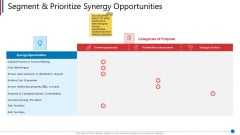 Business Synergies Segment And Prioritize Synergy Opportunities Ppt Show Portrait PDF