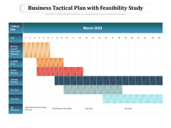 Business Tactical Plan With Feasibility Study Ppt PowerPoint Presentation File Picture PDF