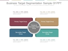 Business Target Segmentation Sample Of Ppt