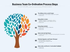 Business Team Coordination Process Steps Ppt PowerPoint Presentation Icon Model PDF