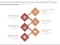 Business Training Consulting And Technical Assistance Ppt Example