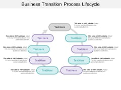 Business Transition Process Lifecycle Ppt PowerPoint Presentation File Professional PDF