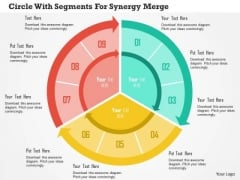 Business Diagram Circle With Segments For Synergy Merger Presentation Template